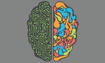 Old Peak Finance - Left Brain, Right Brain